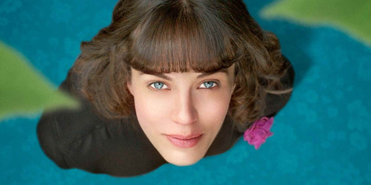 """This Beautiful Fantastic """"Delightfully librarian-ish"""" Review Amy Mansfield"""